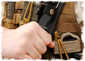 Sheath attached to vest with MOLLE system