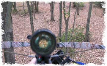 Hunting with a crossbow